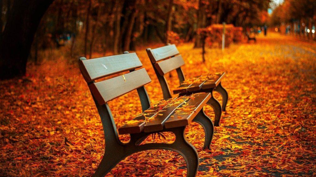 Matrimonio autunnale, by Dream on Wedding - Autumn Wedding